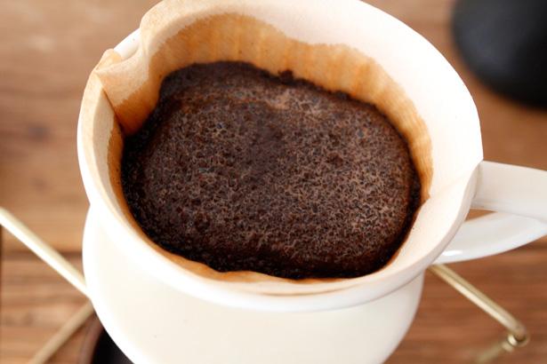 DEAN & DELUCAの期間限定オータムロースターズコーヒーの『tonbi coffee』 ハンドドリップ