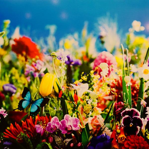熊本現代美術館『蜷川実花展 -虚構と現実の間に-』、 素敵だった。