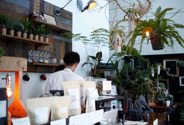 バスキングコーヒー Things can change