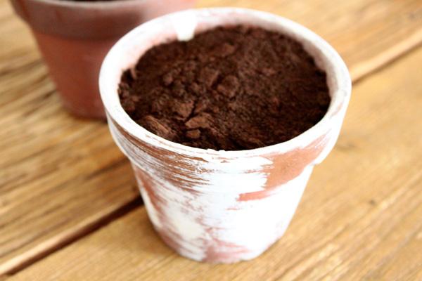 コーヒーカス