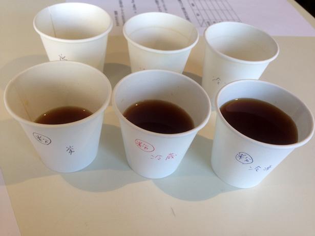 粉の状態で保存していた3種類 飲み比べ